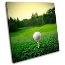 Golf Ball on Tee Sports - 13-1785(00B)-SG11-LO